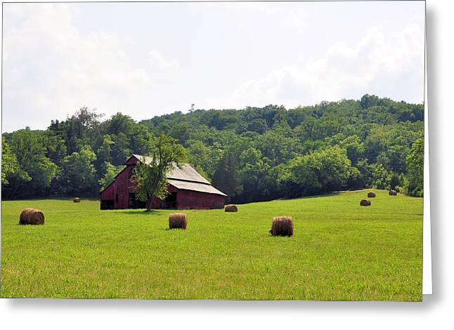 Best Sellers -  - Tennessee Hay Bales Greeting Cards - Green Fields Greeting Card by Jan Amiss Photography