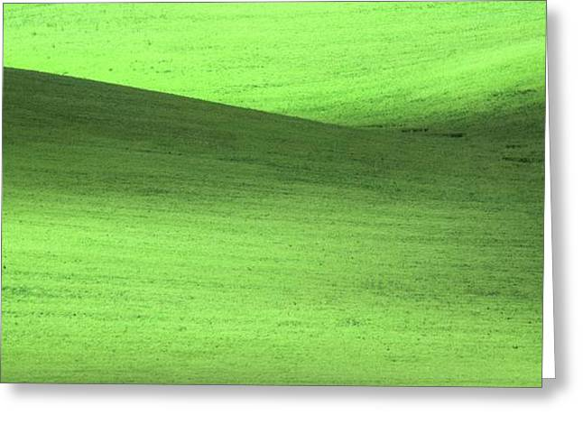 Green Fields Greeting Card by Martin Newman