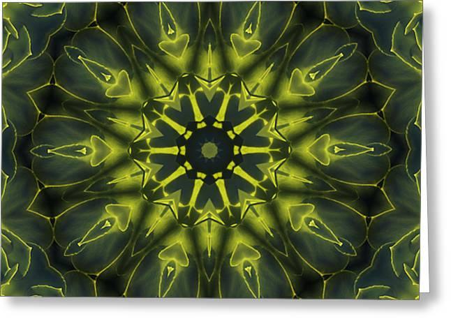 Succulent Mandala Greeting Card
