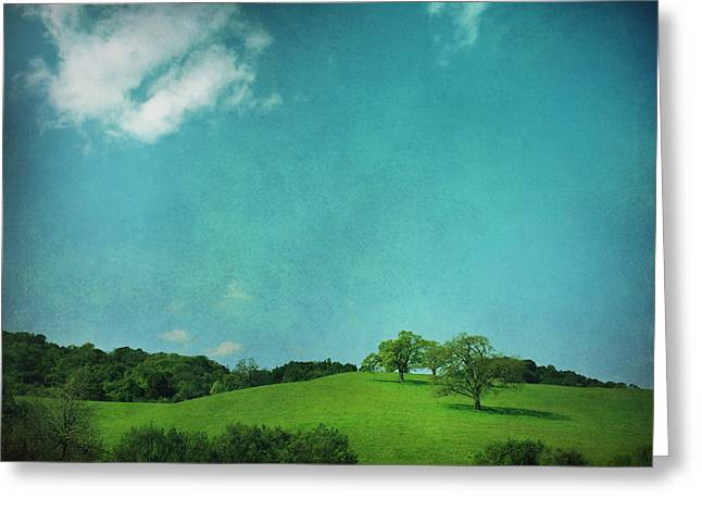 Green Grass Blue Sky Greeting Card by Laurie Search