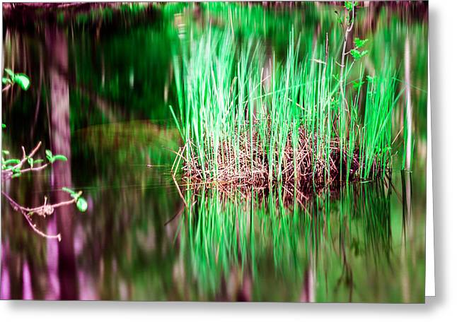 Green Grass In Water Greeting Card