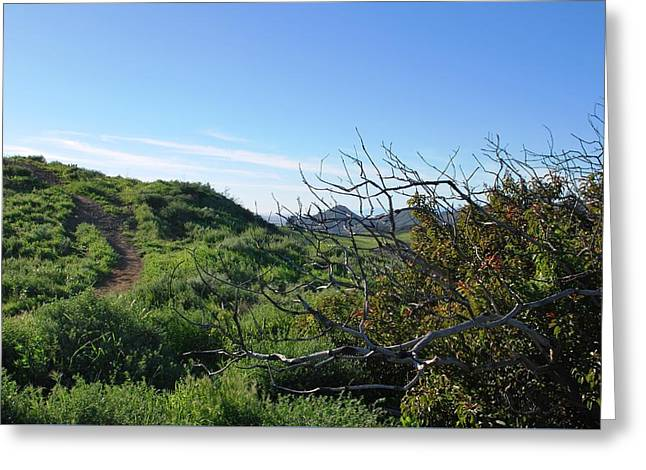Greeting Card featuring the photograph Green Hills And Bushes Landscape by Matt Harang