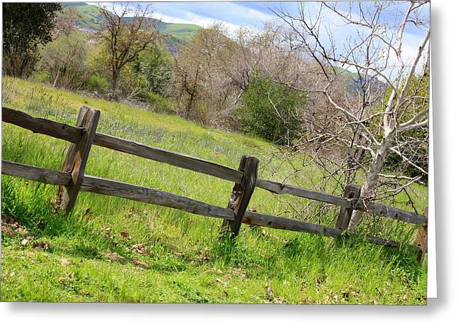 Green Hills And Rustic Fence Greeting Card by Carol Groenen