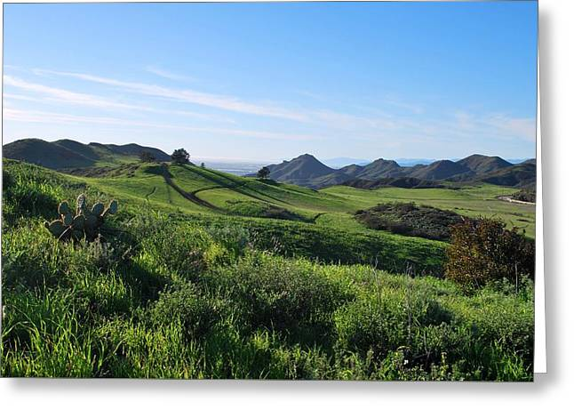 Greeting Card featuring the photograph Green Hills Landscape With Cactus by Matt Harang