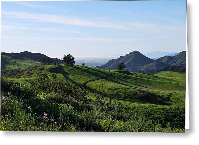 Greeting Card featuring the photograph Green Hills Purple Flowers Foreground  by Matt Harang