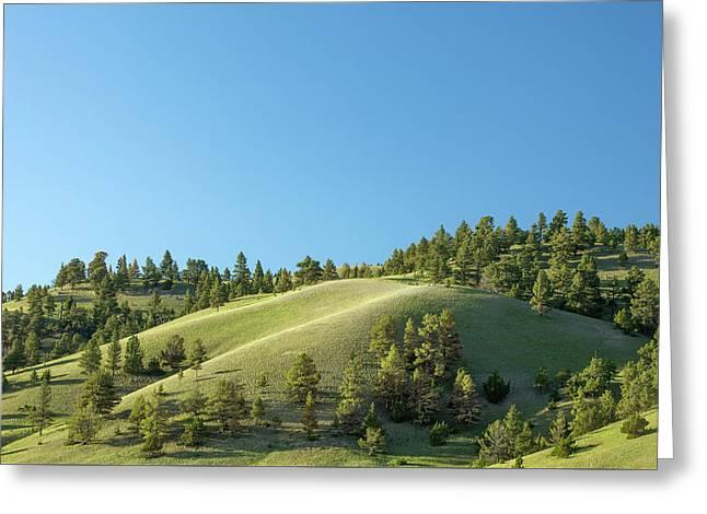 Green Hills Greeting Card by Todd Klassy
