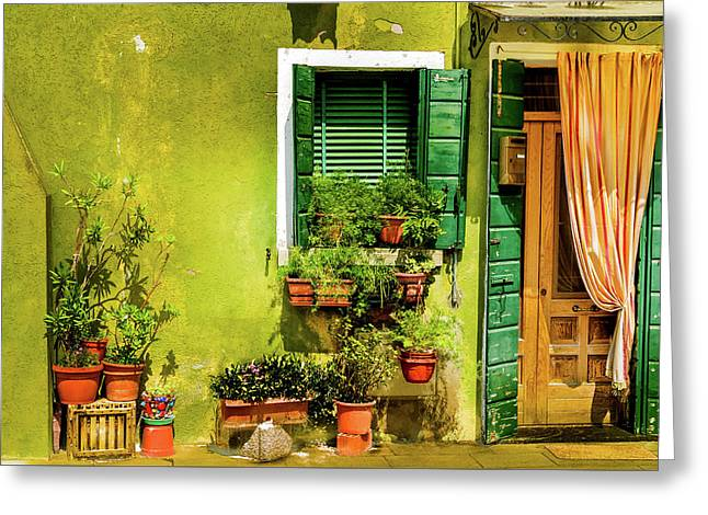 Green House Burano Italy Greeting Card by Xavier Cardell
