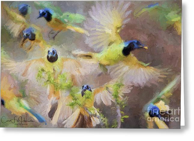 Green Jay Collage Greeting Card