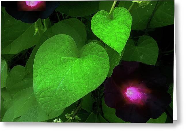 Green Leaf Violet Glow Greeting Card