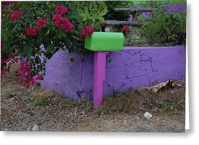 Green Mailbox Greeting Card by Michael Thomas