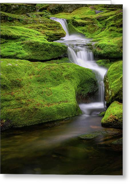 Green Moss Falls Greeting Card by Bill Wakeley