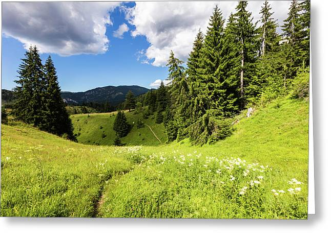 Green Mountain Greeting Card by Evgeni Dinev