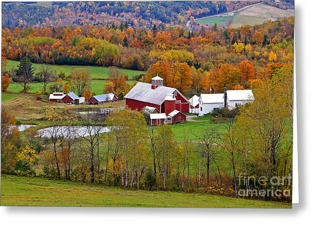 Green Mountain Farm Greeting Card