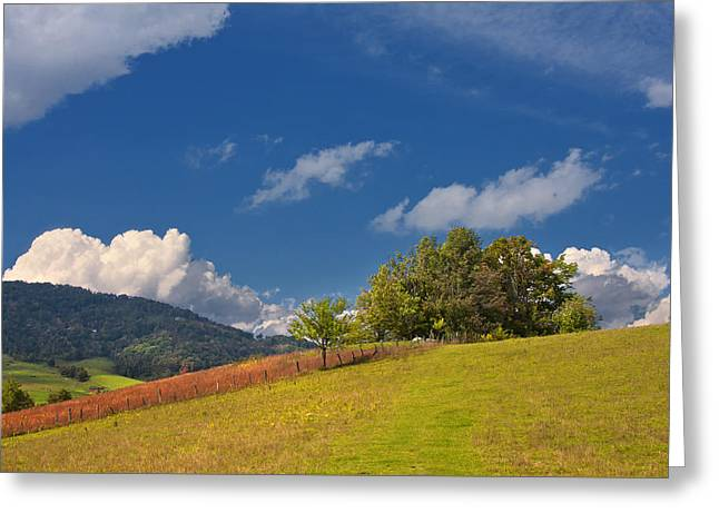 Greeting Card featuring the photograph Green Mountain Pasture by Ken Barrett