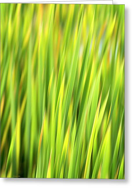 Green Nature Abstract Greeting Card by Christina Rollo