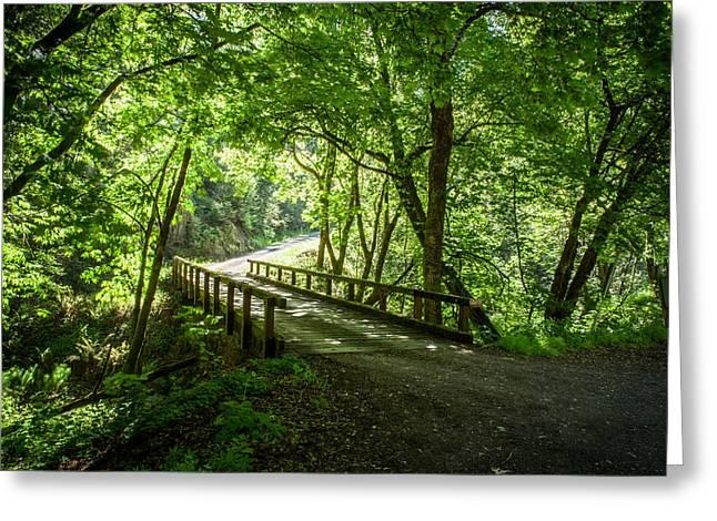 Green Nature Bridge Greeting Card