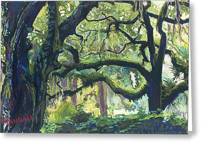 Green Oaks Greeting Card by David Randall