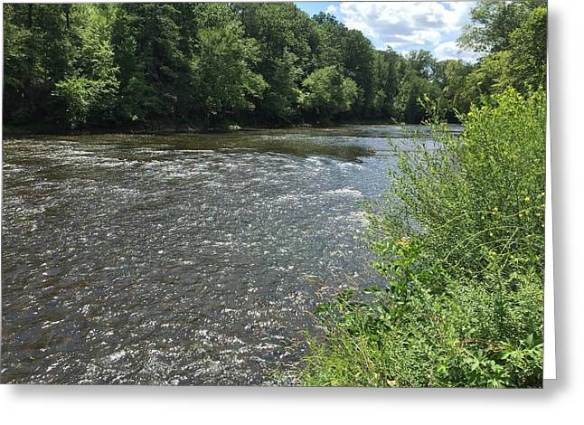 Green On The River Greeting Card