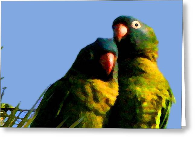 Green Parrot Greeting Card by W Gilroy
