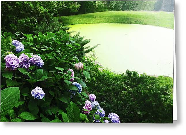 Green Pond Greeting Card