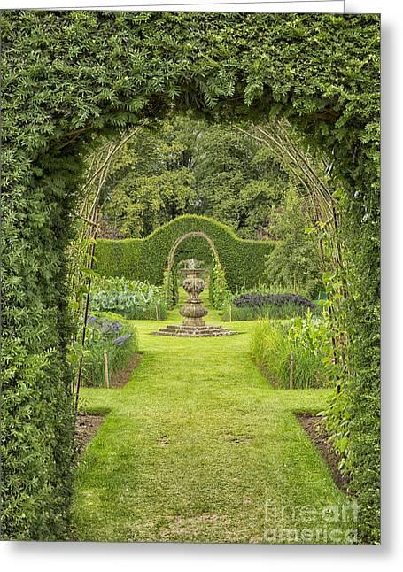 Green Secret Garden Greeting Card by Patricia Hofmeester