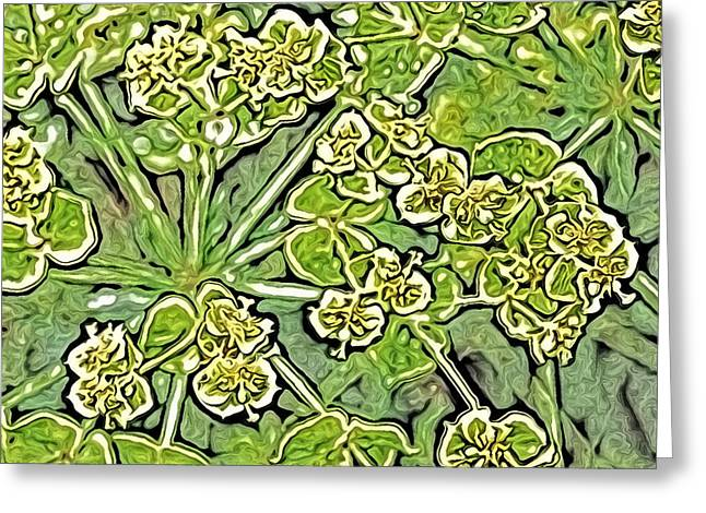 Green Spurge 1 Greeting Card