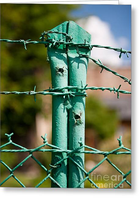 Green Steel Barbed Wire Fence Greeting Card