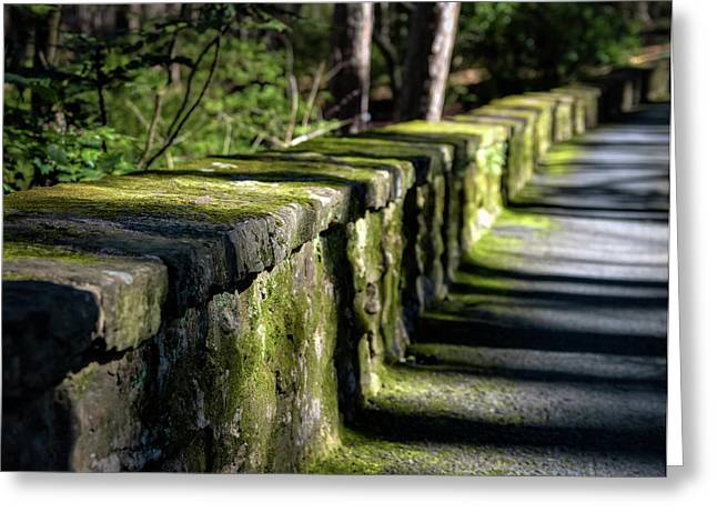 Greeting Card featuring the photograph Green Stone Wall by James Barber