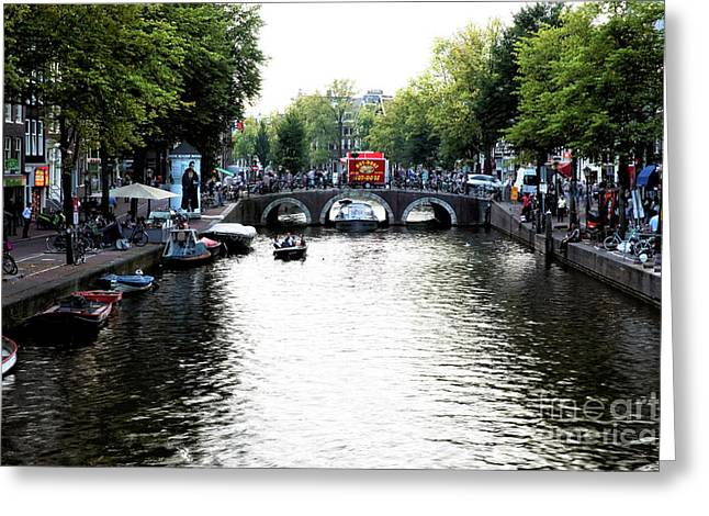 Green Trees Along The Canal 2014 Greeting Card