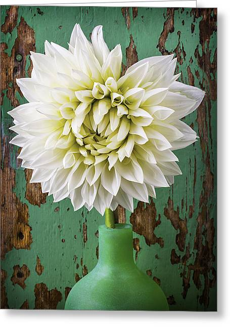 Green Vase With Dahlia Greeting Card by Garry Gay