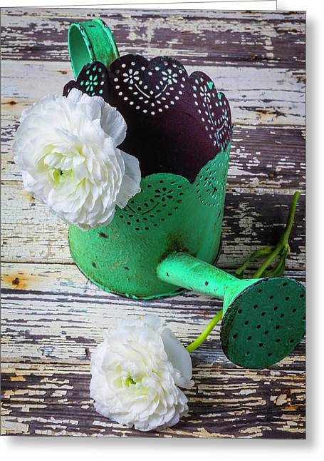 Green Watering Can And Ranunculus Greeting Card by Garry Gay