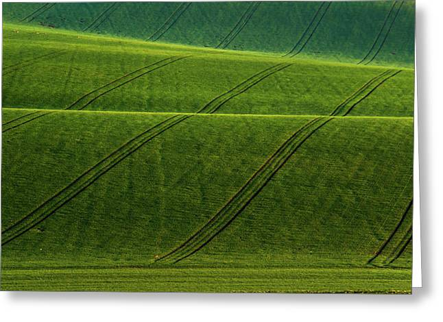 Green Waves Of Rolling Hills Greeting Card by Jenny Rainbow
