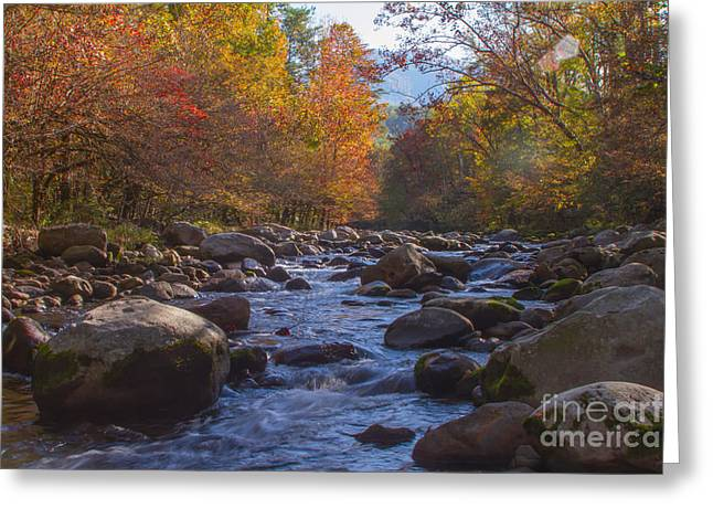 Greenbriar Creek Greeting Card