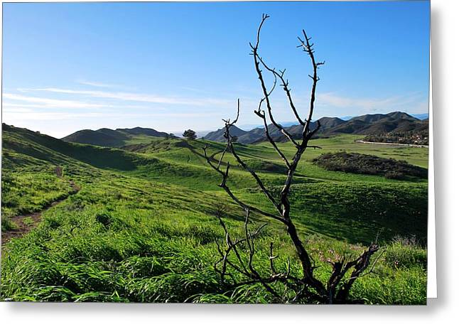 Greeting Card featuring the photograph Greenery In The Hills Landscape by Matt Harang