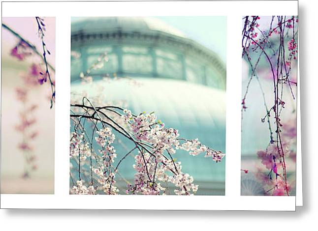 Greeting Card featuring the photograph Greenhouse Blossoms Triptych by Jessica Jenney