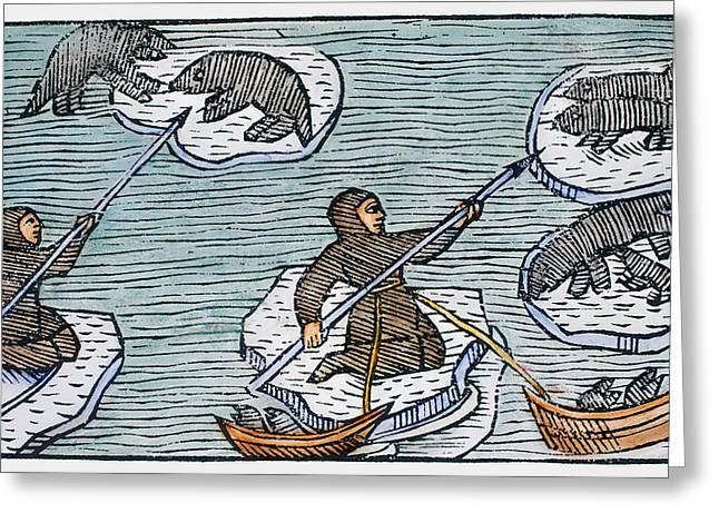 Greenland Eskimos, 1555 Greeting Card by Granger