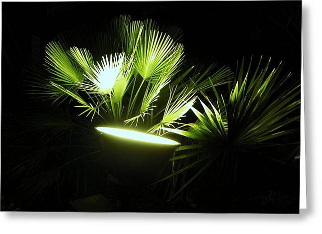 Greenlight 2 Greeting Card by Gregory Letts