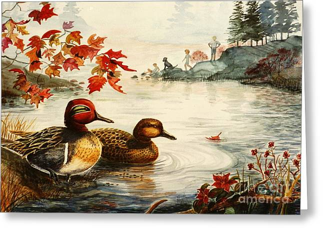 Greenwinged Teal Ducks Greeting Card by Marilyn Smith