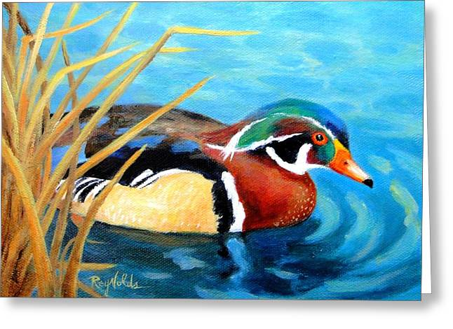 Greeting  The Morning  Wood Duck Greeting Card by Carol Reynolds