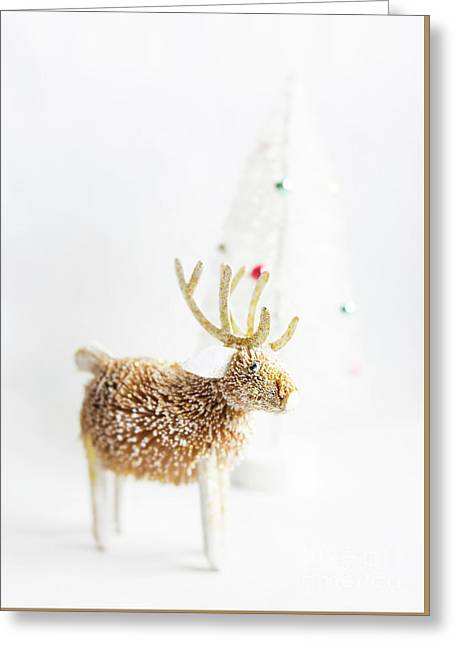 Greeting Card featuring the photograph Greetings From North Pole by Elena Nosyreva