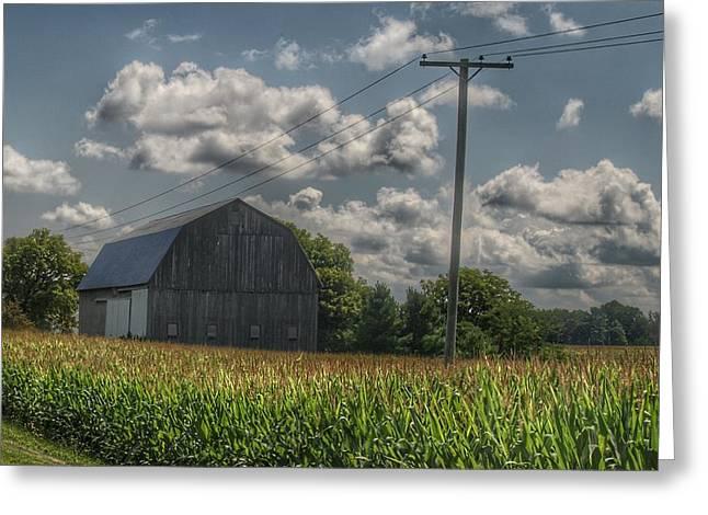 0013 - Grey Barn In A Cornfield Greeting Card