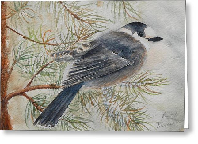 Grey Jay Greeting Card