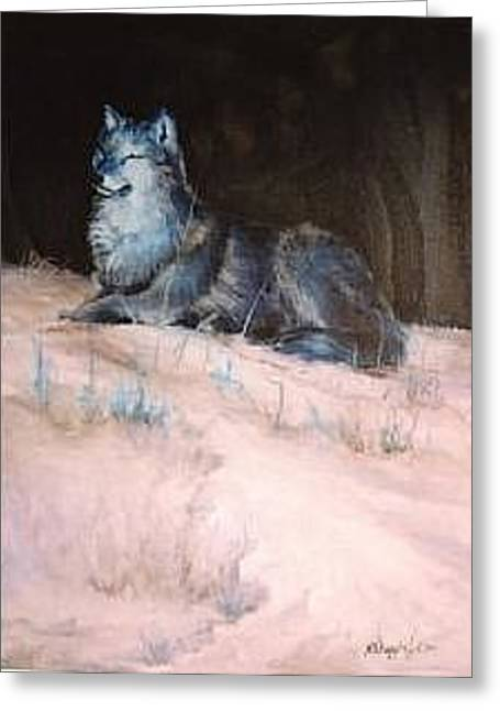 Grey Wolf Basking In The Sun Greeting Card