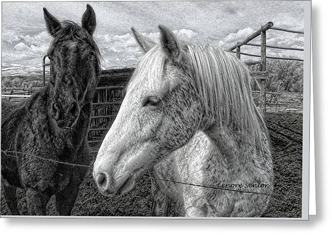 Greyboy And Apache Drawing Greeting Card