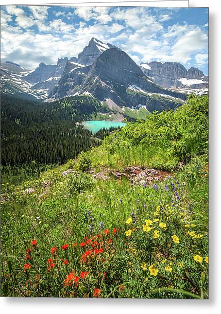 Grinnell Flowers // Grinnell Hiking Trail, Glacier National Park  Greeting Card