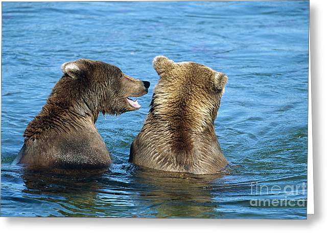 Grizzly Bear Talk Greeting Card by Yva Momatiuk and John Eastcott