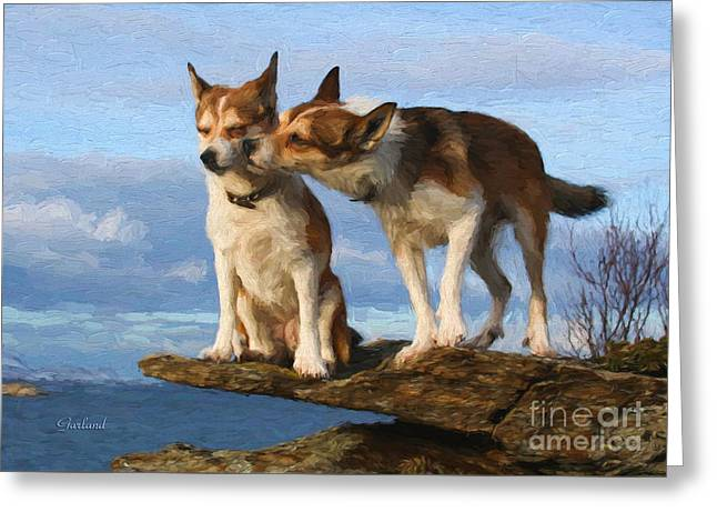 Grooming Dogs Greeting Card by Garland Johnson