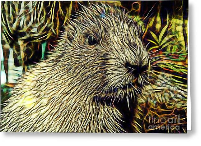 Groundhog Greeting Card by Marvin Blaine