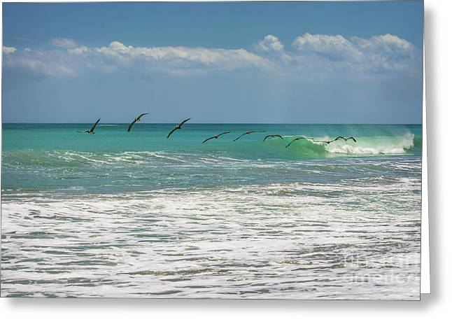 Group Of Pelicans Over The Ocean Greeting Card