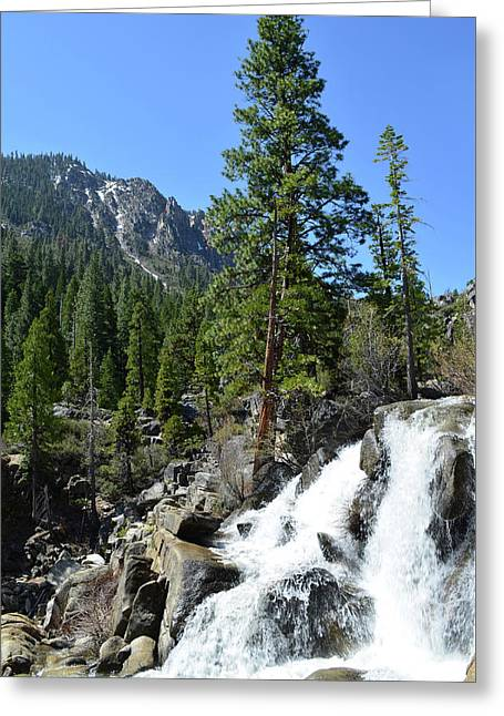 Grover Hot Springs Waterfall Greeting Card by Mindy Linford